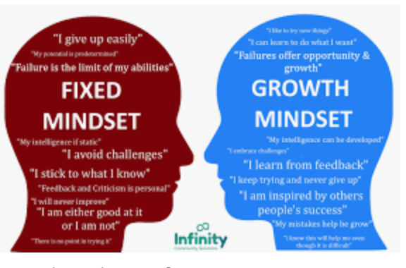 BLOG 6/52 : GROWTH MINDSET